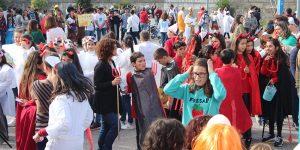 """Desfile de Carnaval 2019: """"Todos juntos, pelos direitos humanos"""""""