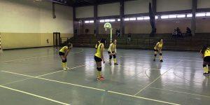 Equipa de Voleibol feminino