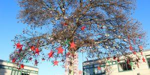Inauguração da árvore de natal 2019