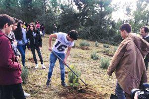 Juntos a plantar Portugal