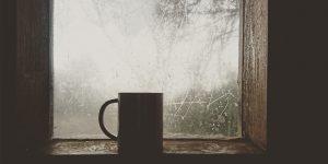 Da minha janela vê-se…