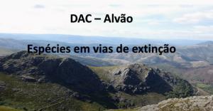 D.A.C. – 1.º Ciclo – E.B. Vilarinho e Centro Escolar Mondim